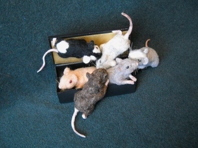 Mouse Litter 15 – The Tiny Feets Brigade