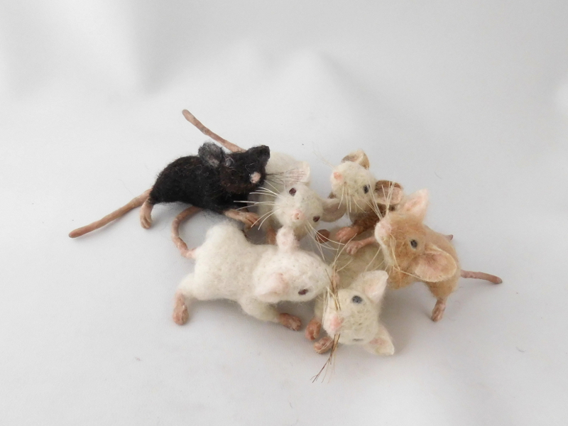 Mouse Litter 22 – Whiskers Wild